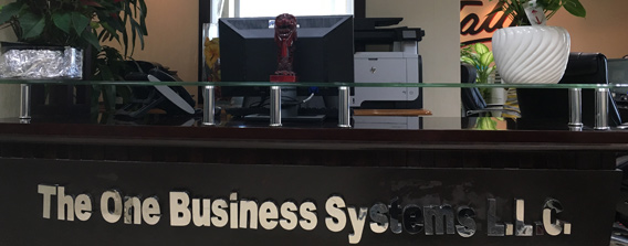 Business Systems LLC